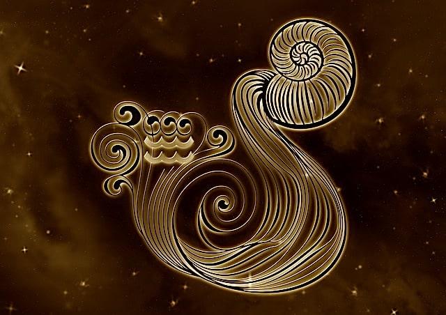Zodiac sign Aquarius (Aquarius)